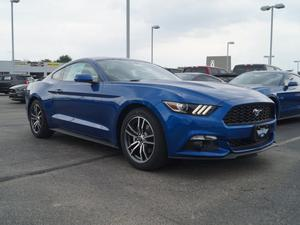 Ford Mustang EcoBoost Fastback in Dallas, TX
