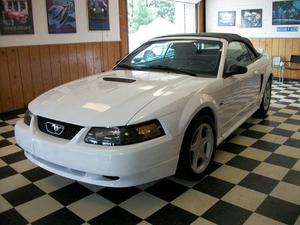 Ford Mustang GT 2DR Convertible